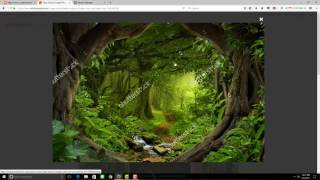 Cara mengambil gambar dari shutterstock menggunakan facebook