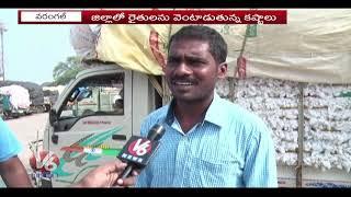 Crop Damage Due To Rain, Cotton Prices Fall Below MSP | V6 Telugu News