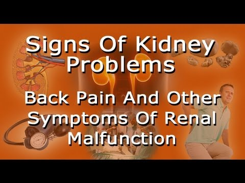 signs of kidney problems - lower back pain and other symptoms of, Cephalic Vein