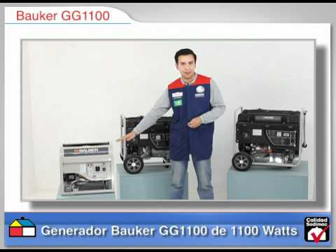 Asesor de compra de generadores Bauker.