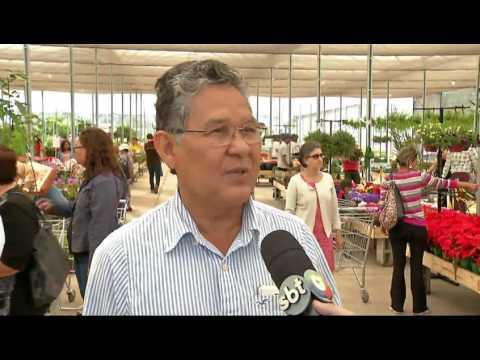Mercado de floricultura cresce 8% e reflete em mega loja