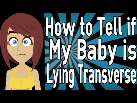 How to Tell if My Baby is Lying Transverse