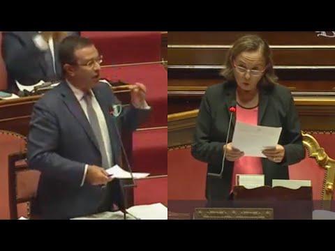 LAMORGESE, ECCO QUELLO É DIVENTATA LAMPEDUSA - STEFANO CANDIANI (LEGA)