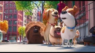 The Secret Life of Pets - Trailer