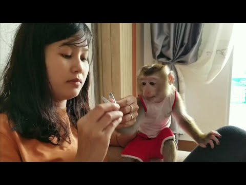 Monkey Baby Nui   beauty for NUI, cleaning nails for NUI