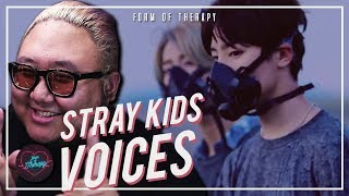 "Producer Reacts to Stray Kids ""Voices"""