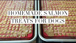 How to Make Homemade Salmon Treats for Dogs