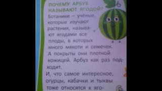 Почему арбуз называют ягодой??? Простой ответ.