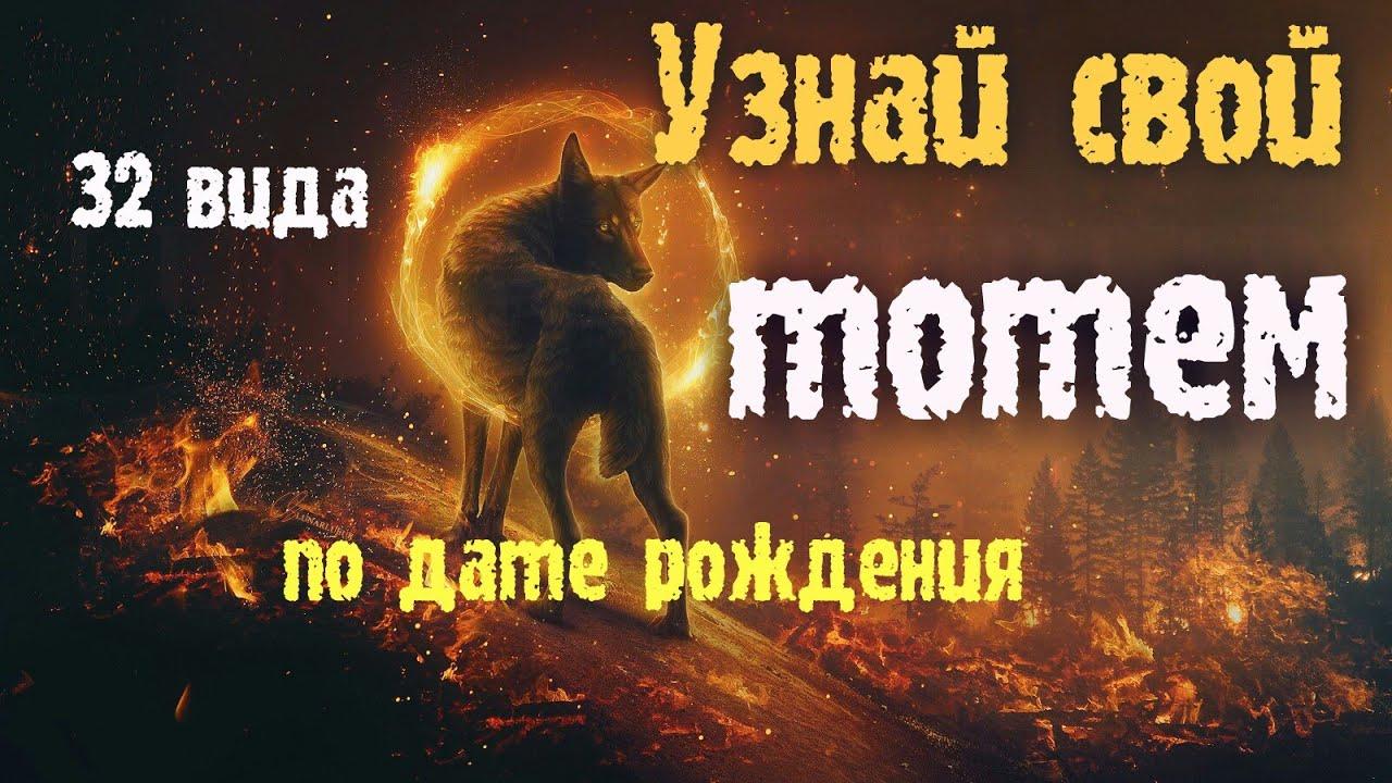 Узнай свое животное по дате рождения/Зороастрийский гороскоп/32 вида #тотемы #гороскопы