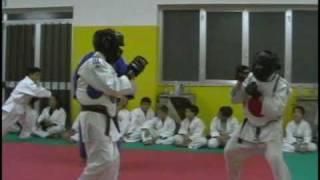 Corsi JudoNipponMartano Judo, Karate, Ju Jitsu, Arte dello Spostamento