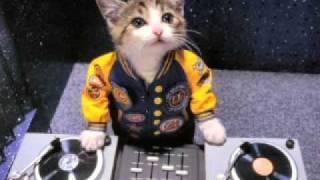 Dj-riDersbOy-Jaadu Hai Nasha Hai Remix 2009.flv