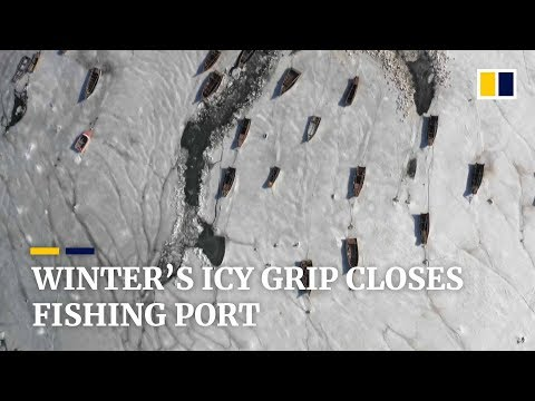 Ice Strands Over 100 Fishing Boats In China's Northeastern Port Of Dalian