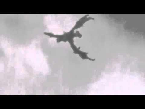 Gempar : Naga Muncul di England