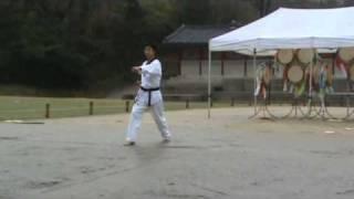 WTF taekwondo patterns Poomse Chonkwon