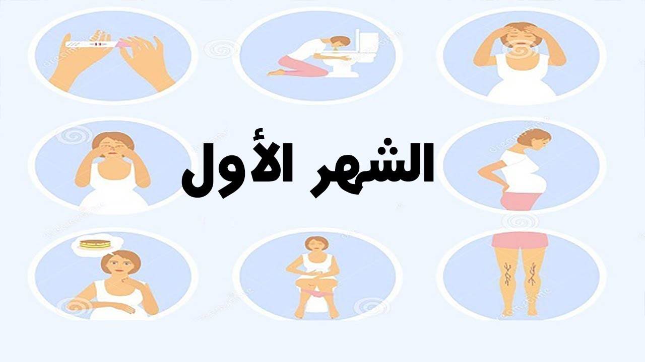 إرسال سلطة إطلاق اشارات الحمل الاولى Sjvbca Org