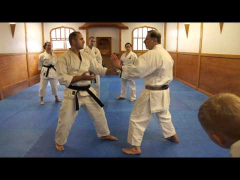 Ki Energy in Karate Application Sugiyama Sensei & Arab Sensei