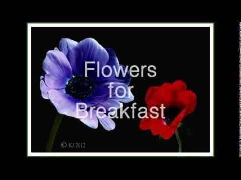 FLOWERS FOR BREAKFAST