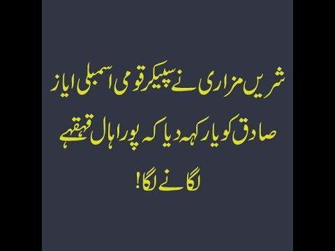 "PTI MNA Shireen Mazari called Speaker National Assembly Ayaz Sadiq ""Yaar"""