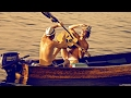 Capture de la vidéo Harris Haare - Full Movie - Music Documentary