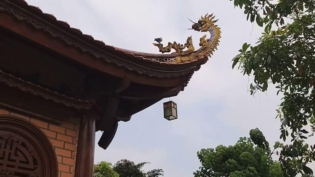 Chùa Thiên Quang | Thiên Quang Ni Tự | Dĩ An – Bình Dương