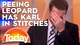 Peeing Leopard Has Karl Losing It | TODAY Show Australia
