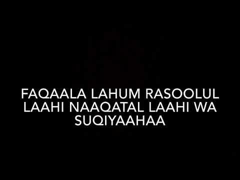 Surah Ash Shams (91) x10 (The Sun)