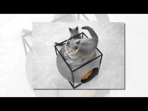 Marvelous Meyou Crafts Feline Furniture For The Contemporary Cat