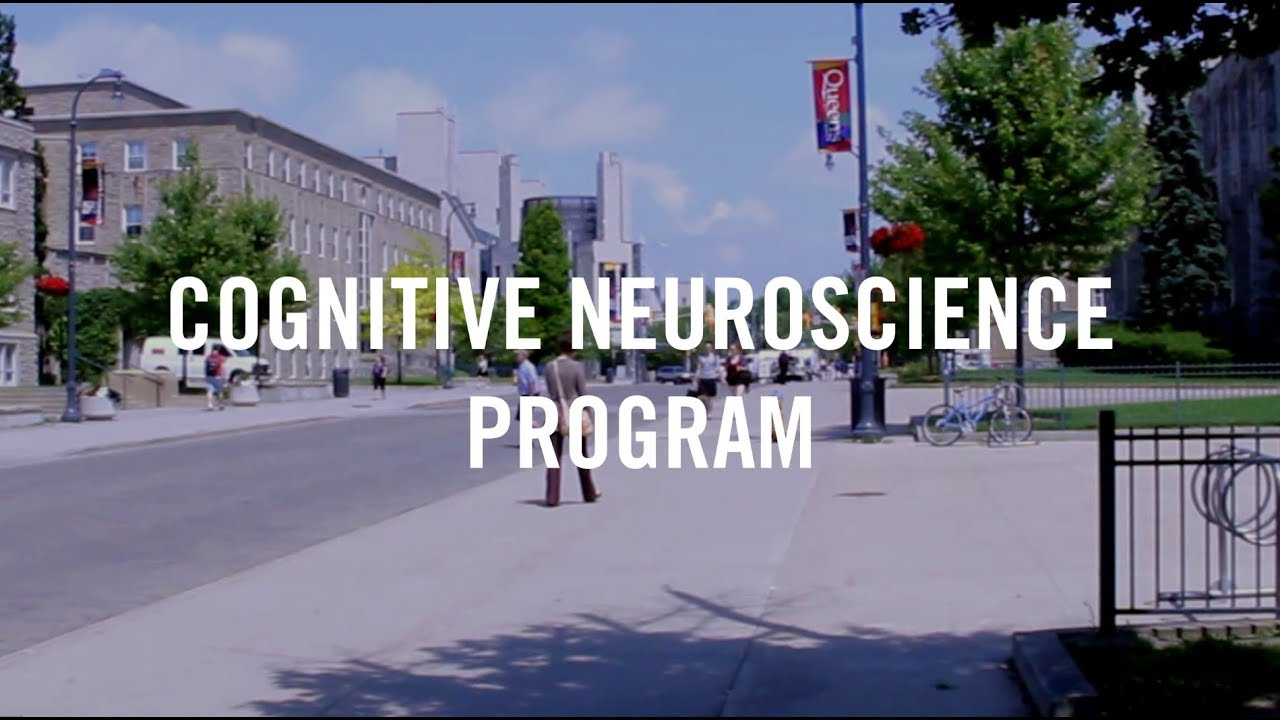 Cognitive Neuroscience Program | Department of Psychology