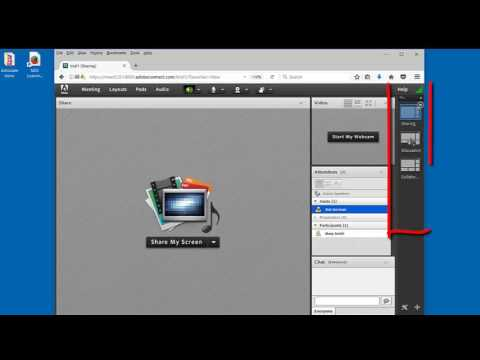 Adobe Connect - Tutorial #1