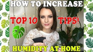 TOP 10 TIPS on how to increase the HUMIDITY in your home!
