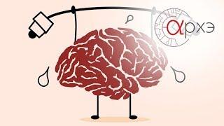 Илья Мартынов: 'Ускорение работы мозга. Научный взгляд'