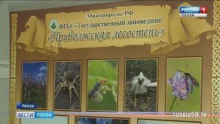 Посетители библиотеки Лермонтова увидят уникальные кадры пензенской природы