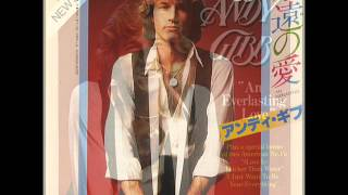 Andy Gibb - An Everlasting Love (Chris' Everlasting Disco Mix)