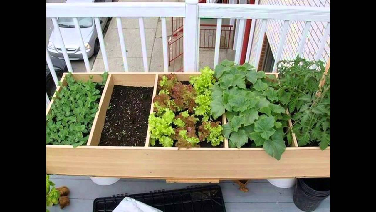 Creative herb garden for apartment - YouTube