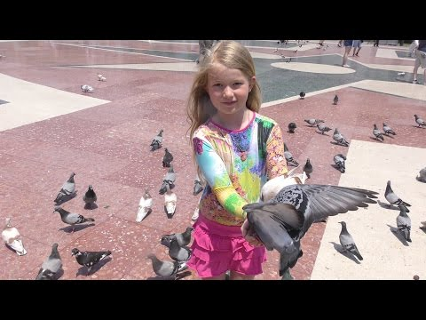 (4K) Catalunya Square-Barcelona,加泰隆尼亞廣場-巴塞隆納(3),群鴿飛舞,4K Ultra HD