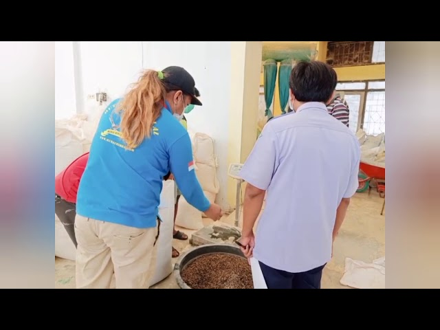 Pembuatan pakan burung dan ikan dari bahan maggot bsf