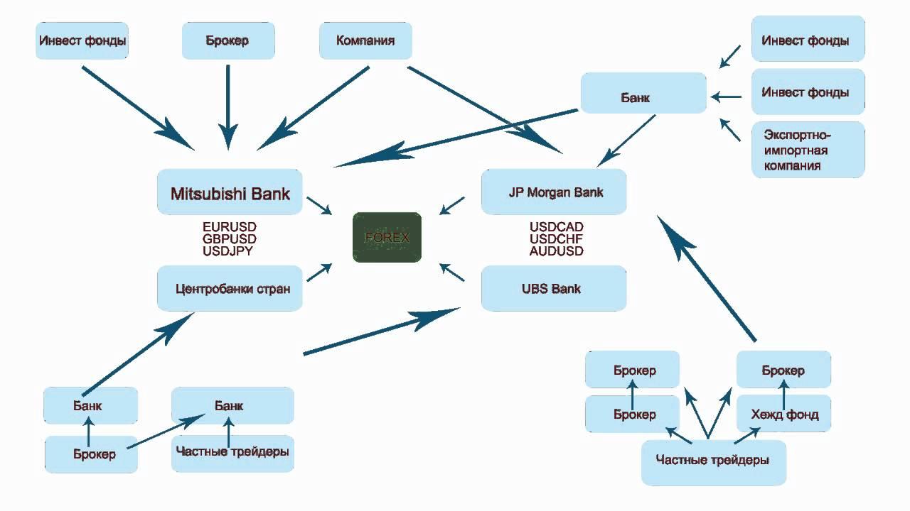 Обучение на валютном рынке форекс форекс эксперт среднесрочная торговля