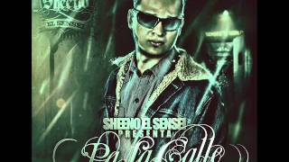 03. Quiere Party - Sheeno 'El Sensei' (Prod by Sheeno) - Pa La Calle (2011)