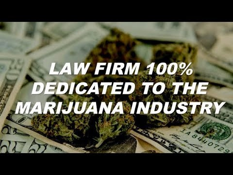 Law Firm 100% Dedicated to Marijuana Industry Hoban Law Group | by Cannabis Frontier