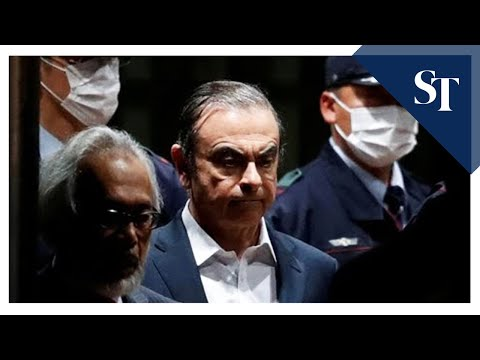 Ghosn fleeing Japan was 'unexpected surprise': Lawyer