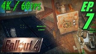 Fallout 4 Walkthrough in 4K Ultra HD / 60fps, Part 7: Secret Cellar & Safes in Sanctuary
