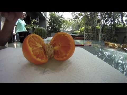Watermelon Blast Rubber Bands Exploding Fruit In Slow Mo