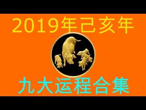 2019年己亥年九大运程大合集:肖猪者2019 001 PIG