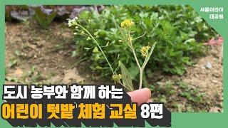 도시농부와 함께 하는 어린이 텃밭 체험 교실 8편 ㅣ 잡초 알아보기, 샌드위치 만들기썸네일