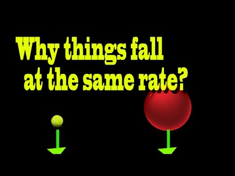 Why things fall at same rate ?|Curiousminds97