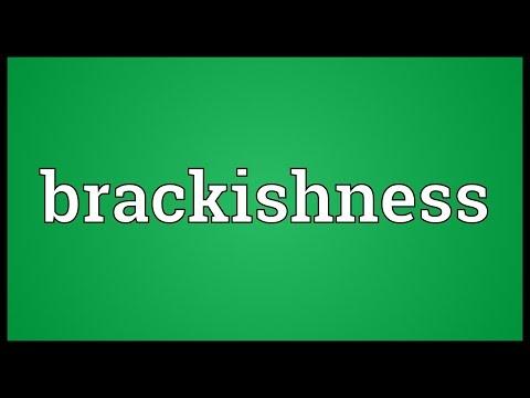 Header of brackishness