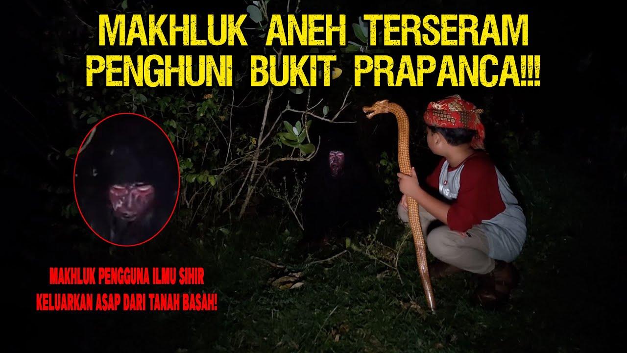 MAKHLUK PALING GANAS PENGHUNI BUKIT PRAPANCA TERTANGKAP KAMERA!!!