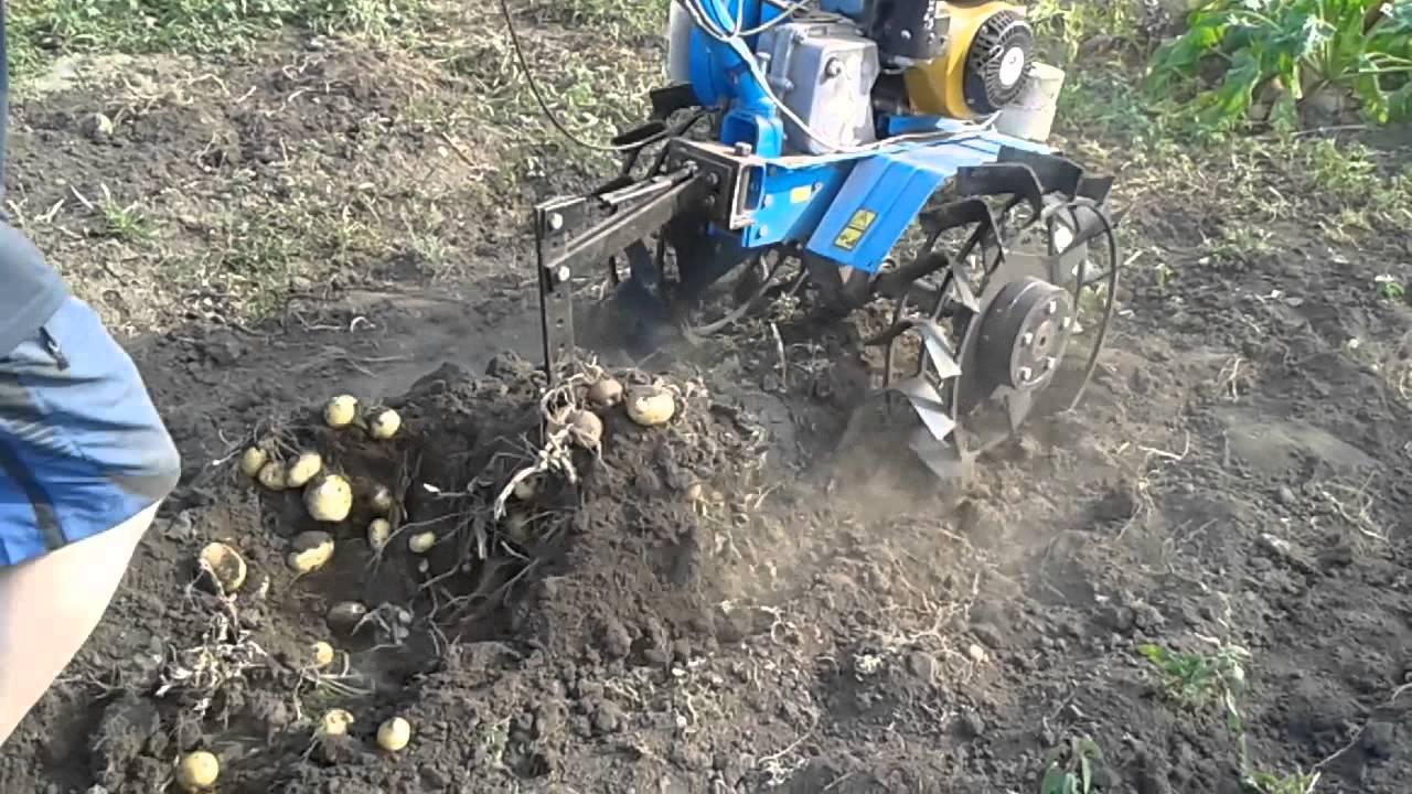 Мотоблок Нева МБ 2 копання картошки