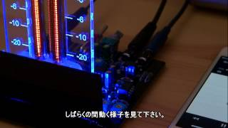 IN-9 Bargraph neon tube VU meter