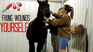 Caring For My Friends INJURED HORSE